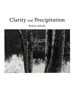 Clarity and Precipitation / Robert Adachi ISBN-9784906978038